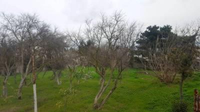 Bakı şəhəri, Sabunçu rayonu, Nardaran qəsəbəsində bağ satılır (Elan: 142689)