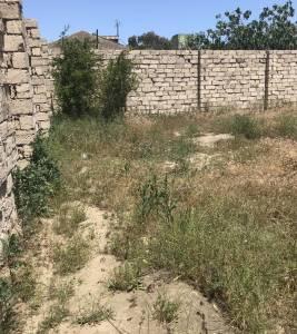 Bakı şəhəri, Xəzər rayonu, Mərdəkan qəsəbəsində torpaq satılır (Elan: 144532)