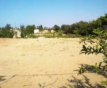 Sumqayıt şəhərində torpaq satılır (Elan: 172767)