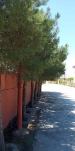 Bakı şəhəri, Sabunçu rayonu, Bilgəh qəsəbəsində, 10 otaqlı ev / villa satılır (Elan: 154469)