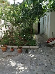 Bakı şəhəri, Binəqədi rayonu, M.Ə.Rəsulzadə qəsəbəsində torpaq satılır (Elan: 144717)