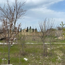 Bakı şəhəri, Abşeron rayonu, Novxanı qəsəbəsində, 3 otaqlı ev / villa satılır (Elan: 190036)