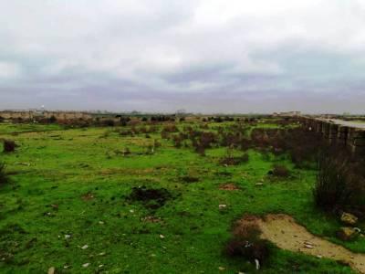 Bakı şəhəri, Sabunçu rayonu, Zabrat qəsəbəsində torpaq satılır (Elan: 161213)