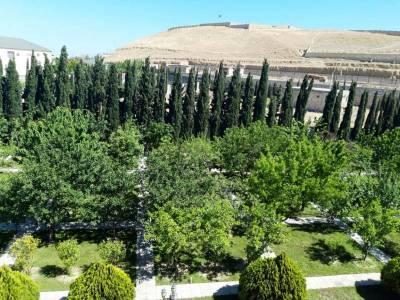 Bakı şəhəri, Abşeron rayonu, Novxanı qəsəbəsində bağ satılır (Elan: 157785)