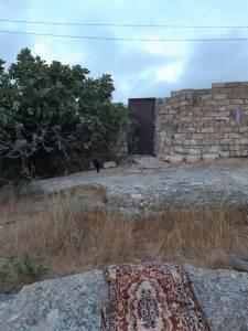 Bakı şəhəri, Sabunçu rayonunda torpaq satılır (Elan: 153665)