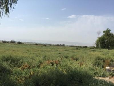 Şəmkir şəhərində torpaq satılır (Elan: 109523)