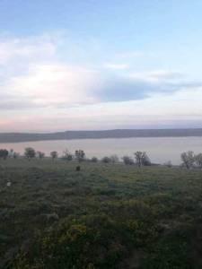 Bakı şəhəri, Abşeron rayonu, Saray qəsəbəsində torpaq satılır (Elan: 157494)