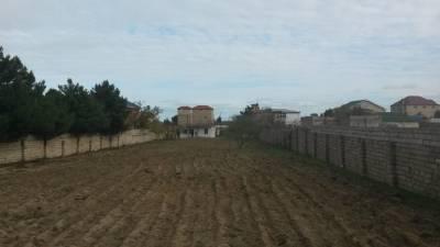 Bakı şəhəri, Abşeron rayonu, Novxanı qəsəbəsində torpaq satılır (Elan: 115509)