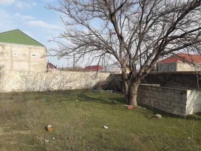 Bakı şəhəri, Abşeron rayonu, Novxanı qəsəbəsində torpaq satılır (Elan: 158088)