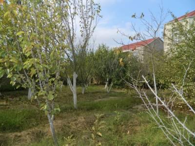 Bakı şəhəri, Sabunçu rayonu, Maştağa qəsəbəsində, 2 otaqlı ev / villa satılır (Elan: 158550)