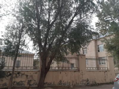 Bakı şəhəri, Binəqədi rayonu, Biləcəri qəsəbəsində, 3 otaqlı köhnə tikili satılır (Elan: 109823)