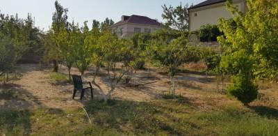 Bakı şəhəri, Abşeron rayonu, Novxanı qəsəbəsində torpaq satılır (Elan: 133290)