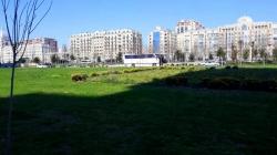 Bakı şəhəri, Səbail rayonunda, 3 otaqlı köhnə tikili satılır (Elan: 189245)