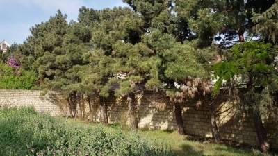 Bakı şəhəri, Binəqədi rayonu, 9-cu mikrorayon qəsəbəsində torpaq satılır (Elan: 166899)