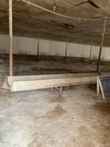 Bakı şəhəri, Abşeron rayonunda obyekt satılır (Elan: 161048)