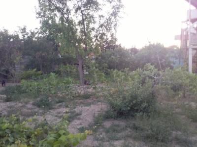 Bakı şəhəri, Xəzər rayonu, Mərdəkan qəsəbəsində torpaq satılır (Elan: 144808)