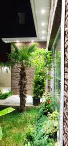 Bakı şəhəri, Xəzər rayonu, Mərdəkan qəsəbəsində, 3 otaqlı ev / villa satılır (Elan: 109738)