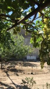 Sumqayıt şəhərində, 4 otaqlı ev / villa satılır (Elan: 147324)