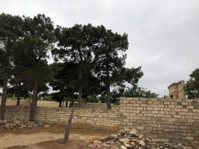 Bakı şəhəri, Xəzər rayonu, Mərdəkan qəsəbəsində torpaq satılır (Elan: 109212)