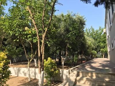 Bakı şəhəri, Sabunçu rayonu, Bilgəh qəsəbəsində bağ satılır (Elan: 109464)