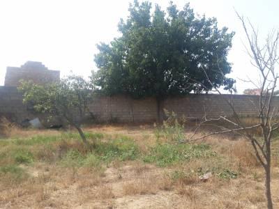 Bakı şəhəri, Abşeron rayonunda torpaq satılır (Elan: 161201)