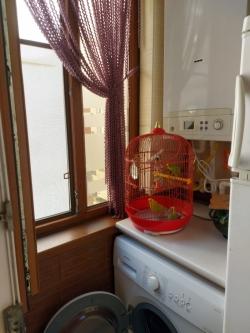 Xırdalan şəhərində, 3 otaqlı yeni tikili satılır (Elan: 201763)