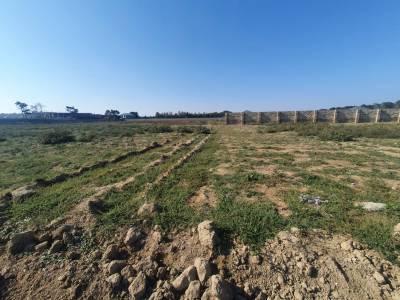 Bakı şəhəri, Sabunçu rayonu, Maştağa qəsəbəsində torpaq satılır (Elan: 158283)