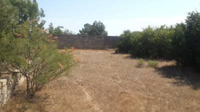 Bakı şəhəri, Xəzər rayonu, Türkan qəsəbəsində torpaq satılır (Elan: 154337)