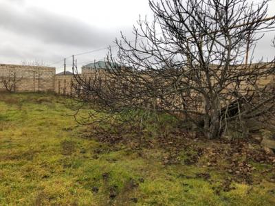 Bakı şəhəri, Xəzər rayonu, Mərdəkan qəsəbəsində torpaq satılır (Elan: 108822)